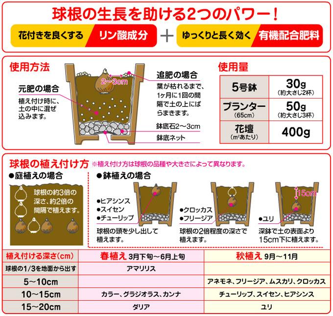 球根の肥料