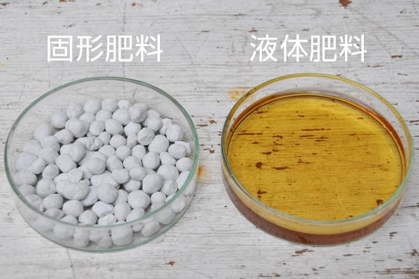 固形肥料と液体肥料