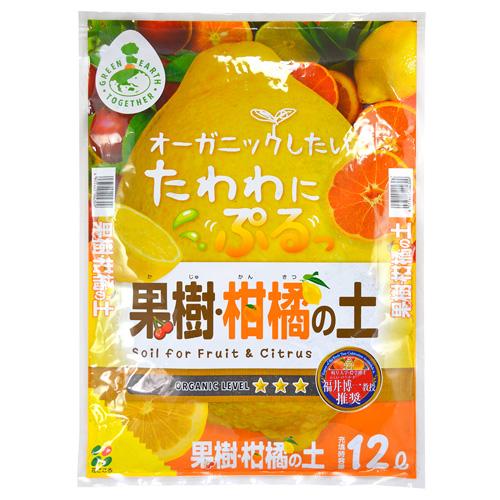 果樹柑橘の土