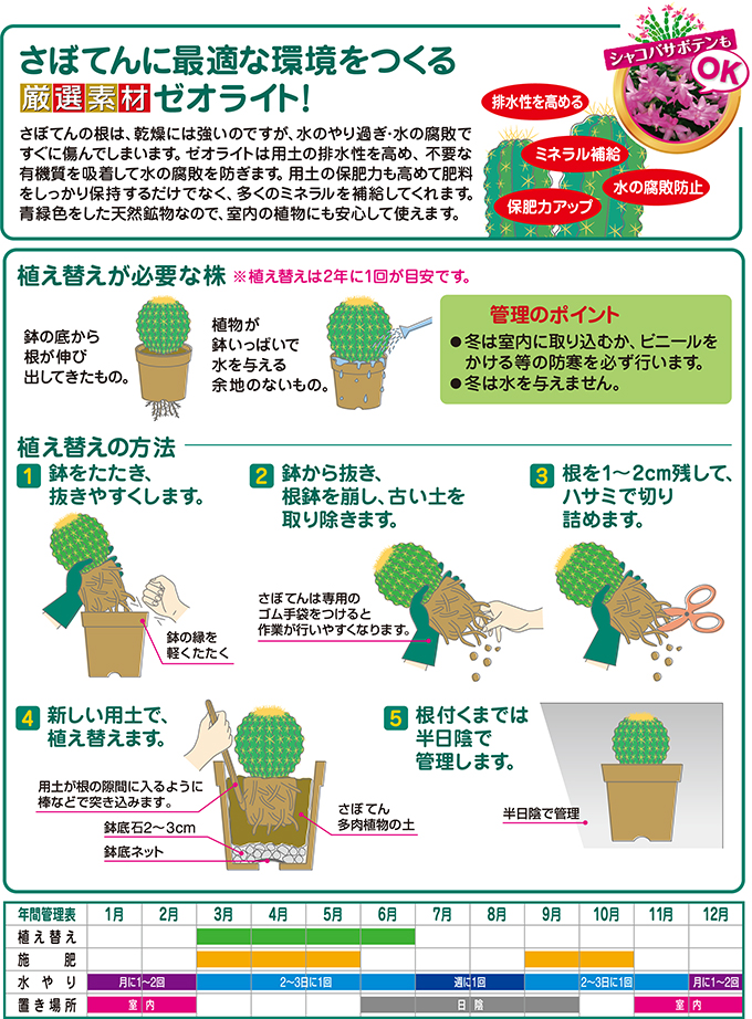 さぼてん多肉植物の土