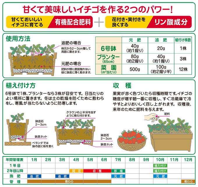 甘いイチゴをつくる肥料