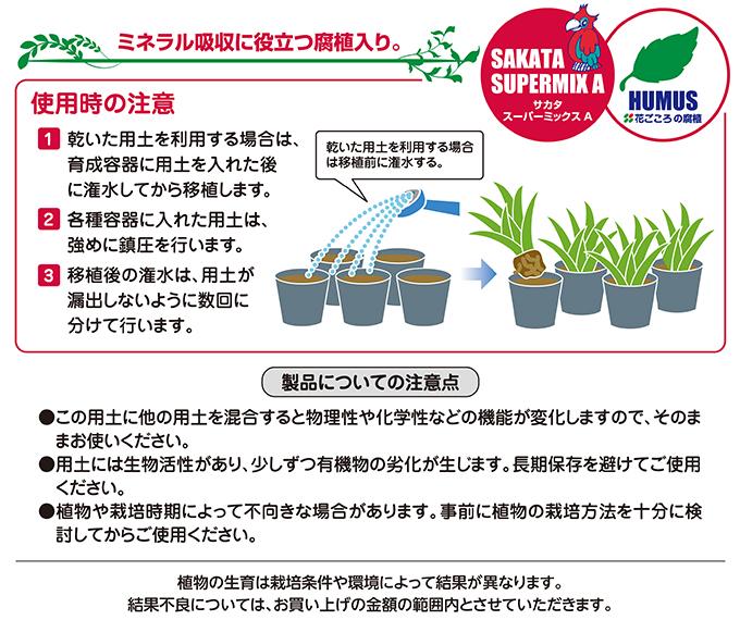育苗鉢上げ培土