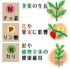 花ごころ 花咲ライフ118「リンカリ肥料」