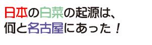 花ごころ 旬の園芸レッスン70 へぇ〜、そうだったの!? 「あいちの伝統野菜」日本の白菜の起源は、 何と名古屋にあった!