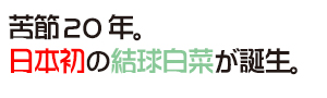花ごころ 旬の園芸レッスン70 へぇ〜、そうだったの!? 「あいちの伝統野菜」苦節20年。 日本初の結球白菜が誕生。