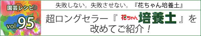 超ロングセラー『花ちゃん培養土』を改めてご紹介!