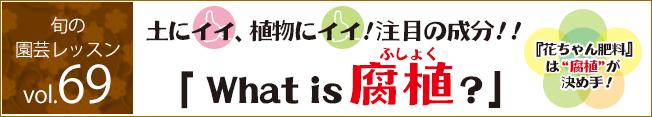 花ごころ 旬の園芸レッスン69「花ちゃん肥料は腐植が決め手って What's 腐植?」